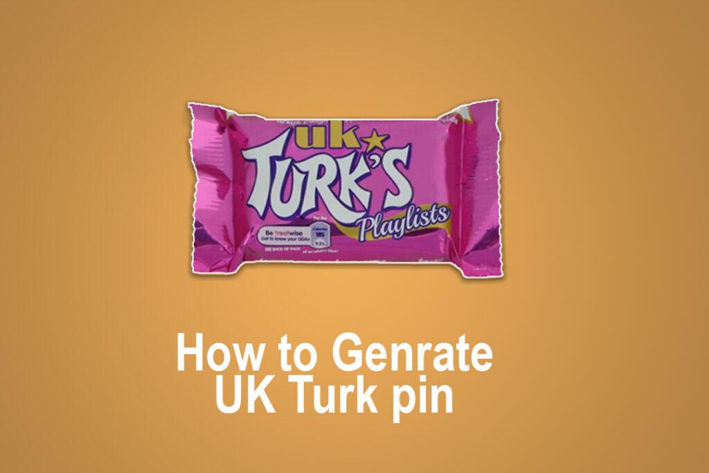 UK Turk Pin